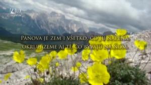 ŽALM 24
