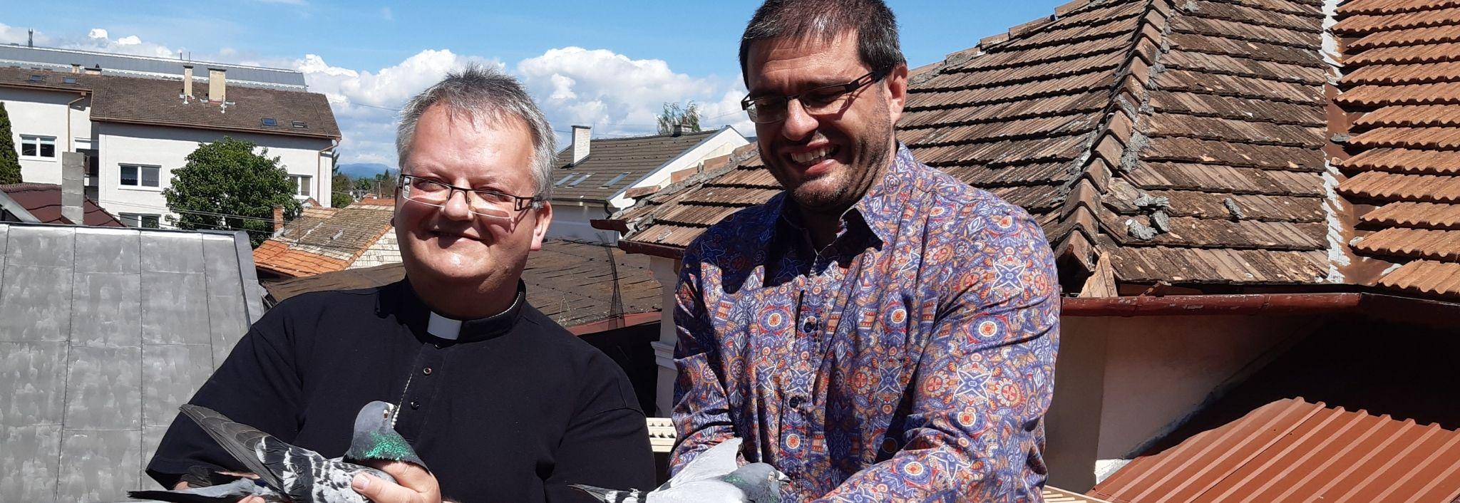 S holubmi na streche